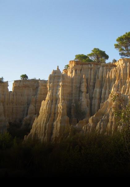Camping en Languedoc-Roussillon