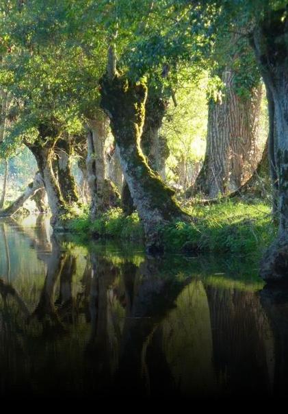Camping en Poitou Charentes